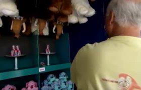 Tri-Line: 8 Traps seen at fairs