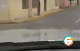 #VIDEO: