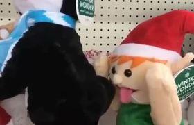 Ellos si saben disfrutar la #Navidad