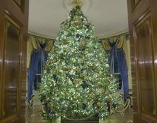 #VIRAL: 2019 Christmas Decorations at the White House