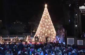 Donald Trump y su discurso durante el encendido del árbol Nacional Navideño