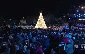 Donald Trump lights National Christmas Tree in Washington