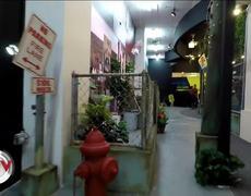Daddy Yankee Museum opens its doors in Puerto Rico