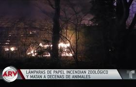 More than one hundred animals die by fire in a zoo