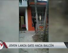 Joven lanza a un gato a un balcón y lo captan en video