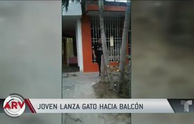 Young man throws a cat to a balcony and is captured on video