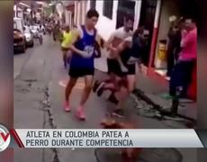 Athlete causes outrage by kicking a dog during competition