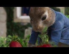 Peter Rabbit 2: A La Fuga (2020) Official Trailer Spanish