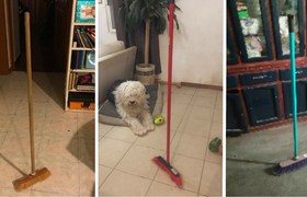 Broom Challenge: Reveal the mystery of the viral challenge that is conquering many