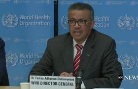 World Health Organization declares coronavirus a pandemic