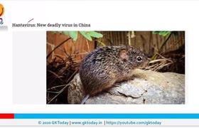Nuevo virus azota China, Hantavirus