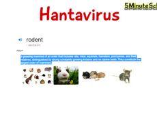 Hantavirus - Hantavirus Pulmonary Syndrome - Basic info on what you need to know