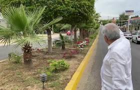 #AMLO: Flores embellecen camino en Badiraguato