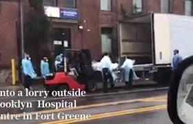 Esto es REAL!!! Impresionante VIDEO muestra a autoridades colocando cuerpos en camiones refrigerantes en NY