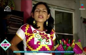 Maestra de Oaxaca da clases en línea en zapoteco