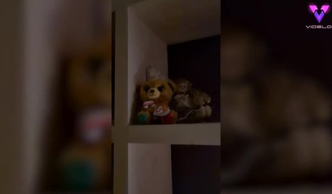 Alleged paranormal force makes this cuddly toy turn on a light