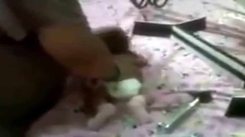 Videos de bebes abusados sexualmente