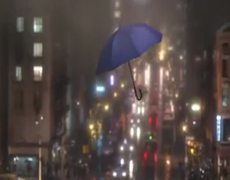 The Blue Umbrella Official Extended Clip 2013 HD Pixar