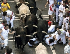 Inicia la Pamplonada en San Fermín España