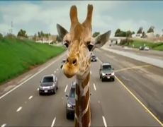 The Hangover Part III Official Movie TV SPOT Now Playing 2013 HD Zach Galifianakis Movie