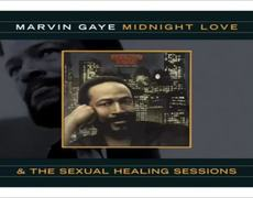 Sexual Healing Marvin Gaye Official Audio 5 Song ideal for have sex