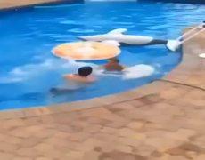Auuchhhh Pool Jump FAIL