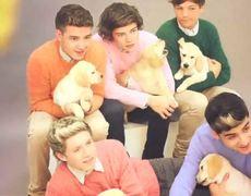 One Direction Wonderland Teaser Official BehindtheScenes Cover Shoot