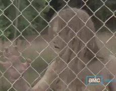 The Walking Dead Season 3 Teaser Resurrection 2012 HD