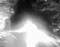 Unexplained Creatures Caught On Trail