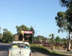 Dog Surfing Over Car
