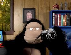 A PSA El Sindrome del Video Vertical