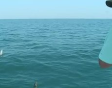 Fish jumps into boat FAIL