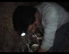 As Above So Below Official Movie TV SPOT Your Past Will Haunt You 2014 HD Ben Feldman Horror Movie