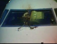 Bird Strike Forces JetBlue Emergency Landing