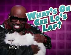 Whats on CeeLos Lap On The Ellen Show