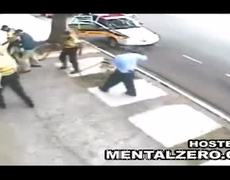 Wild Pitbulls Attack a Brazilian Womans Pet Dogs