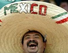 VIVA MEXICO A GUIDE TO MEXICAN POLITICS