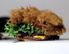 The Chewbacca Hamburger Star Wars