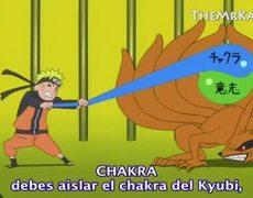 Naruto Shippuden (221) Sub. Español 1/2