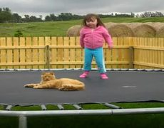 Cat more Trampoline = Magic