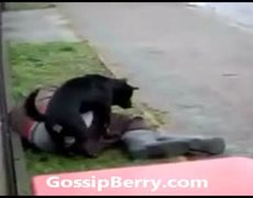 Dog Rapes Bum