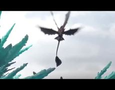 How To Train Your Dragon 2 Movie CLIP