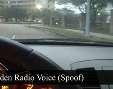 Homeless Man Golden Voice Spoof