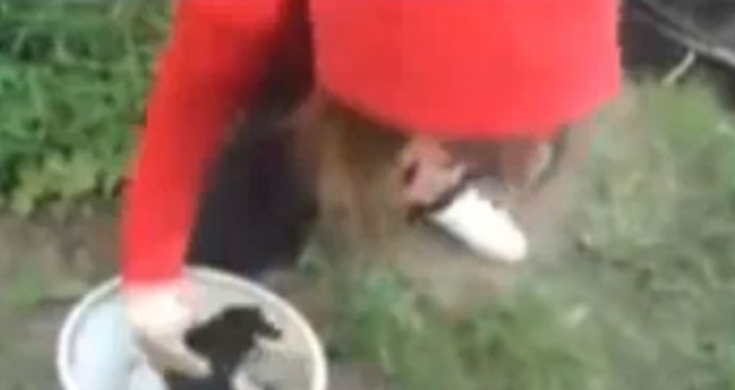 Girl Throws Puppies In River Video Stronger Animal Cruelty