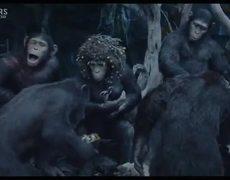El Planeta de los Simios Confrontación Trailer Oficial 2 Subtitulado Español 2014 HD