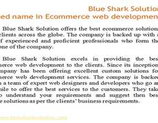 Blue Shark Solution â A trusted name in Ecommerce web development