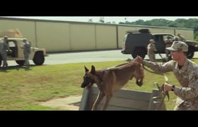 Max - Official Movie TV SPOT: Sounds Like a Hero To Me (2015) HD - War Dog Drama