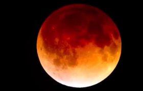 blood moon viewing fl - photo #22