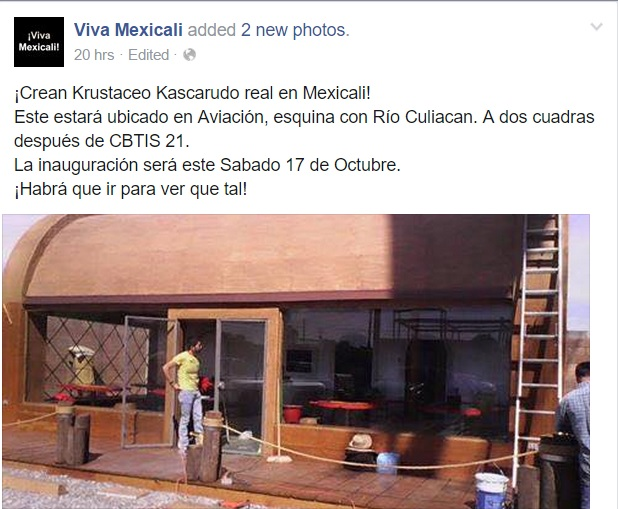 El Krustáceo Kascarudo Existe Y Está En Mexicali Sandiegoredcom