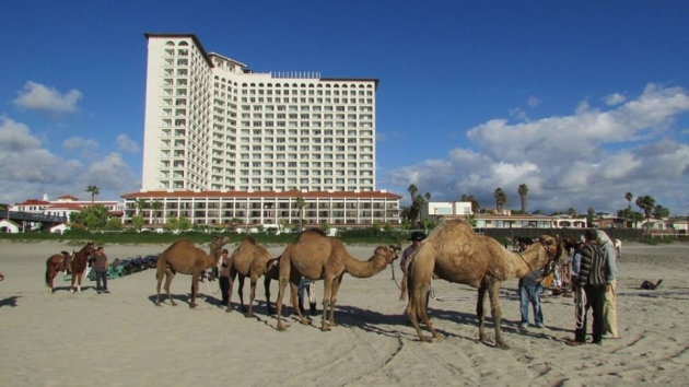 Rosarito Beach Activities The Best Beaches In World